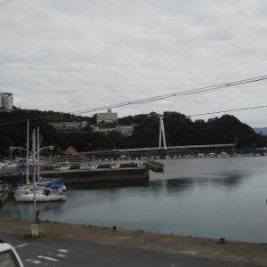 泉佐野ヨットクラブのクルージング