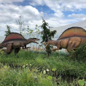 クリオドラコン?史上最大級の翼竜はケツァルコアトルスじゃなかった?