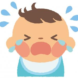 6歳が解説する『赤ちゃんの泣いてる理由』