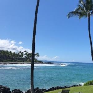 ♪常夏の楽園、ハワイ♪
