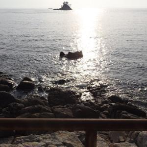 春の 篠島      久しぶりにきました            海の幸満載の料理がさいこー