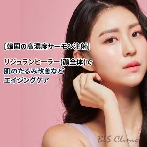 [韓国の高濃度サーモン注射] リジュランヒーラー(顔全体)で肌のたるみ改善などエイジングケア