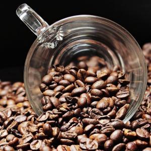 コーヒーはホットとアイスで味が違う?最適な豆を知って美味しく飲もう!