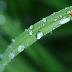 梅雨の時期になると肌にかゆみが起きるのは何故?原因と解決方法を探ろう