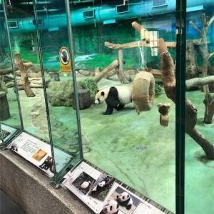 パンダが見られる!台北動物園のみどころ