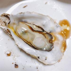 希少な桃こまち牡蠣をお取り寄せしたらめちゃくちゃ美味しかった話
