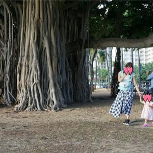 【ハワイ】子連れ旅行記6日目 カイルアでウェディングフォトー1歳8ヶ月の子供と初めての海外旅行ー