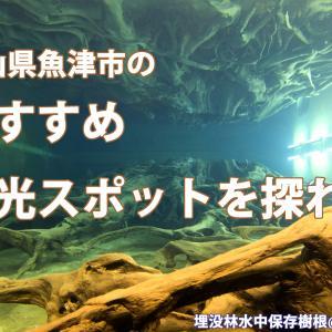富山県魚津市のおすすめ観光スポットを探れ!