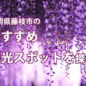静岡県藤枝市のおすすめ観光スポットを探れ!