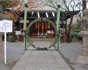 日本の文化  夏越の祓 茅の輪くぐり 落語