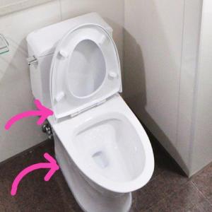 【トイレ掃除】知ってることはすぐやろう!