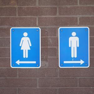 ロンドンの無料トイレのある美術館 6選