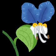 真っ青な花ってある?
