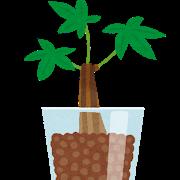 ハイドロアンチ「植物をファッションとか飾り程度にしか思ってないよな」