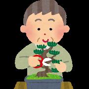 そろそろ50歳が見えてきたから年相応に盆栽とかするべきなのかな?