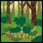 部屋を熱帯雨林にしたいのに、  世話が面倒で何も買えない