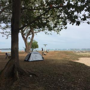 シンガポールで5年ぶりのキャンプ