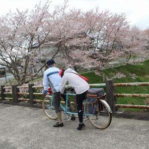 大宇陀お花見ゆるゆるサイクリング
