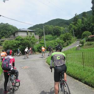 河内長野の棚田サイクリング