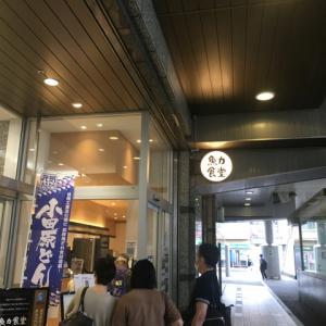 魚力食堂 (小田原)