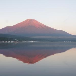 牛モモ肉のビール煮に挑戦!朝焼けの富士山の撮影もできました/湖山荘キャンプ場-後編