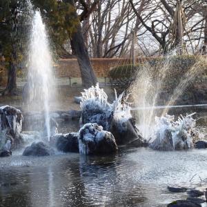 氷のドラゴン & アカゲラ