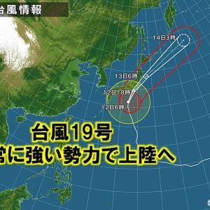 台風19号が去ったので定置網の点検に行ってきました!