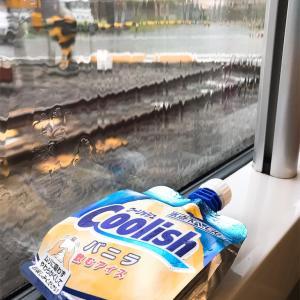ゲリラ豪雨と共に東京へ。