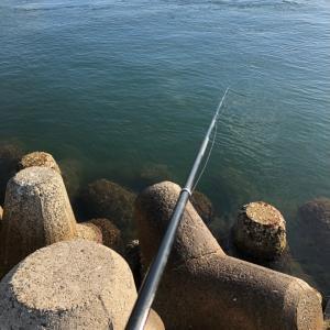 近場の堤防でチヌ釣り