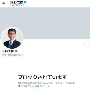 河野太郎はどんな発言をしているのかとツイッターをのぞいたらブロックされてました(笑)