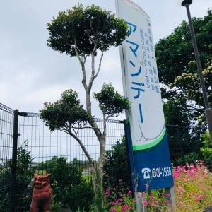 【介護福祉士実務者研修】鹿児島県奄美市にて開催!