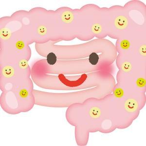 メトホルミンは腸で効く→すると腸内細菌は?[1]