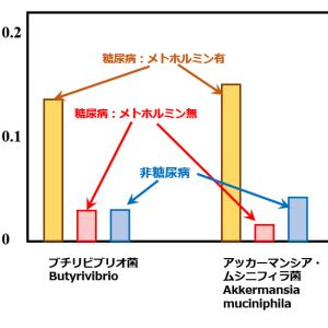 メトホルミンは腸で効く→では腸内細菌は?[3完]