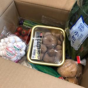 【ふるさと納税】佐賀県鹿島市の旬のおまかせ野菜BOX定期便。2回目。
