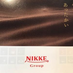 【3201】ニッケの優待カタログ(2021年5月末権利)ポップコーンチキン♪