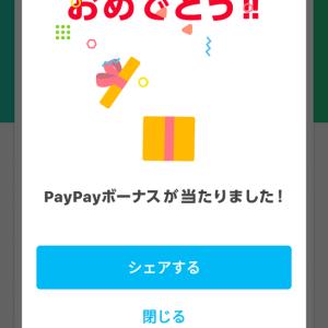 PayPay きた=================っつ(興奮)(≧▽≦)
