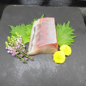 近大が開発した「ブリヒラ」を限定発売 ブリのうまみとヒラマサの食感をあわせ持ったハイブリット