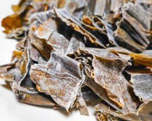 1908年7月25日は、「うま味調味料」の発見日。