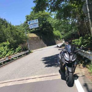 ぷらっと山梨経由で静岡へ戻り