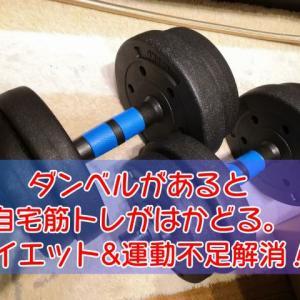 【自宅筋トレ】ダンベルがあると筋トレが超はかどる。自宅でダイエット、運動不足解消、体力作り!