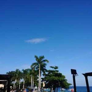 晴れない気持ちですが、昨日・・・海&食 オルブル&月 爆笑