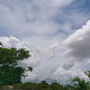 フイリピン マリゴンドンでの日常