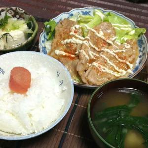 ディナーコレクション Part1【生姜焼き】【キンピラ】【牛丼】【麻婆豆腐】【ハンバーグ】【肉じゃが】