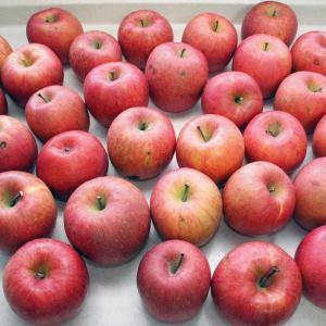 アップルフィリングとアップルジャム【かなぢゃん食堂】【りんご】