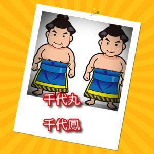 相撲千代丸は兄弟で関取!弟は千代鳳!仲がいいの?