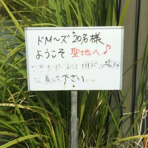 ド・エムーズ IN 田島池