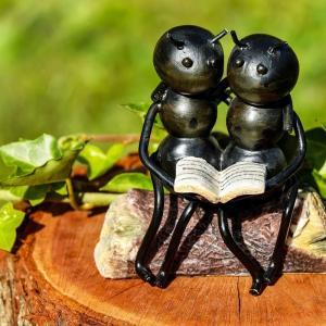 この夏のお子さんの自由研究に!!アリの観察キットをご紹介します!!