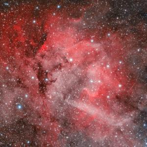 ライオンだぁ~! sh2-132 ライオン星雲
