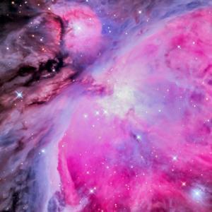 今年の大星雲は、今年のうちに! M42