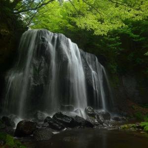 緑葉滴る初夏の達沢不動滝